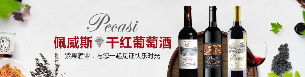 上海紫果国际贸易有限公司