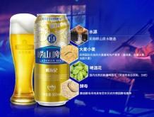 青岛崂山啤酒 崂友记 10度黄啤 500ml*12听整箱