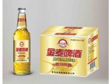 欧劲金麦啤酒500MLx12瓶