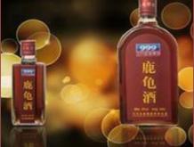 三九保健酒—鹿龟酒