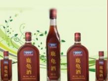 三九保健酒—鹿龟酒2