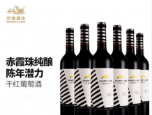 红酒单支2支装沙地红酒赤霞珠老藤干红国产葡萄酒750ml红酒