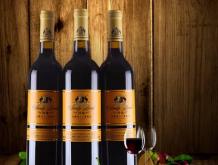 沙地皇标赤霞珠干红葡萄酒750ml