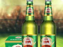 姜掌柜经典啤酒8度500ml